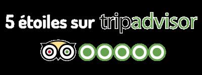 icon-5stars-tripadvisor